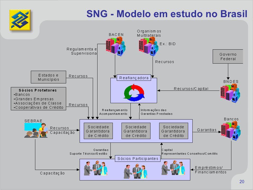 SNG - Modelo em estudo no Brasil