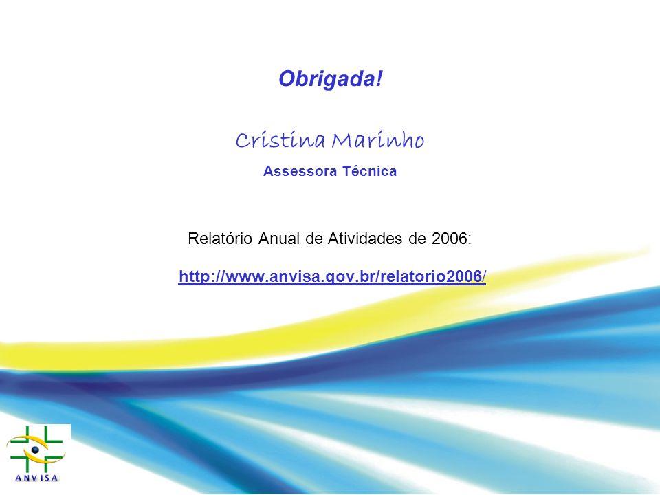 Relatório Anual de Atividades de 2006: