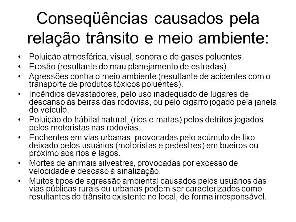 Conseqüências causados pela relação trânsito e meio ambiente: