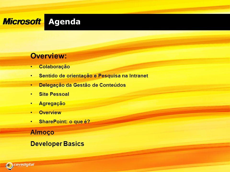 Agenda Overview: Almoço Developer Basics Colaboração