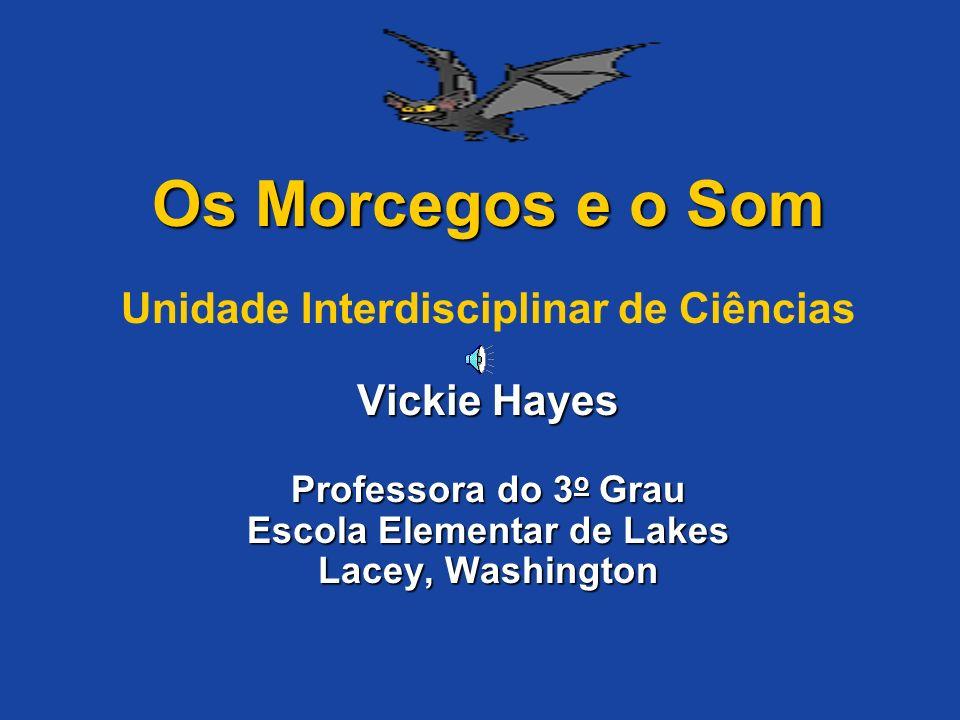 Os Morcegos e o Som Unidade Interdisciplinar de Ciências Vickie Hayes Professora do 3o Grau Escola Elementar de Lakes Lacey, Washington