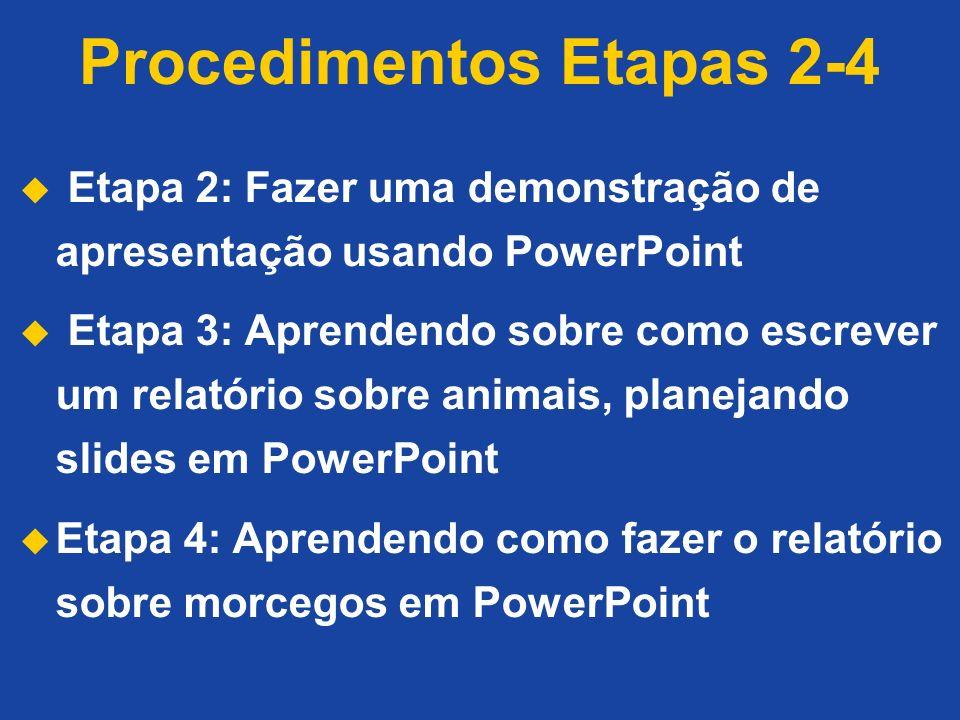 Procedimentos Etapas 2-4