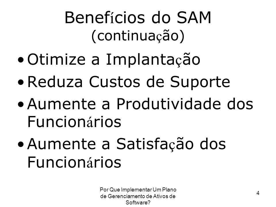 Benefícios do SAM (continuação)