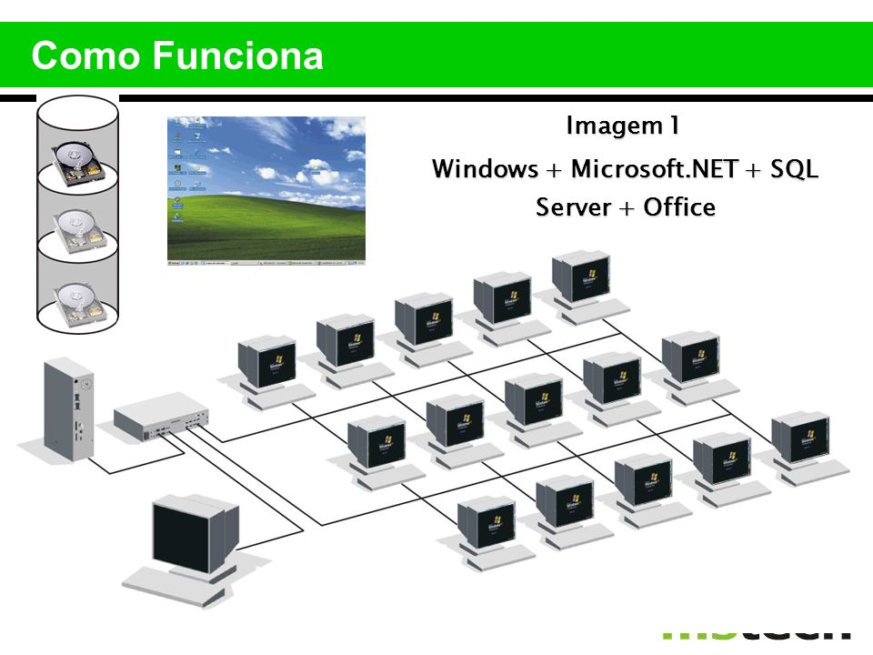 Windows + Microsoft.NET + SQL Server + Office