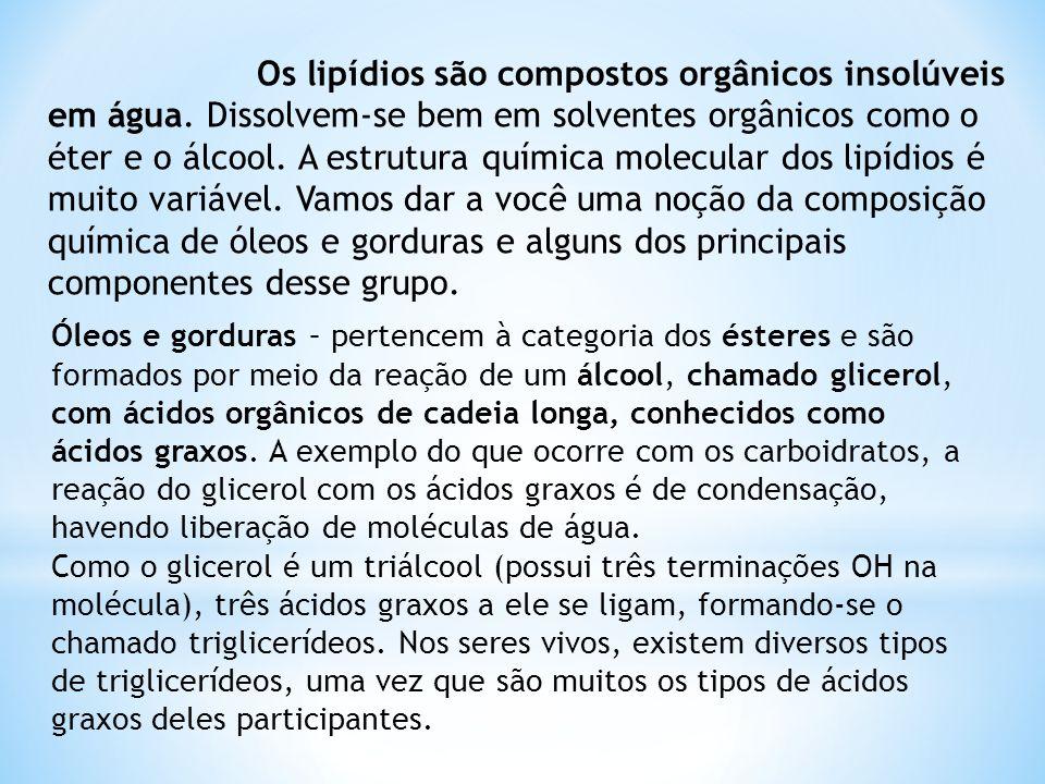 Os lipídios são compostos orgânicos insolúveis em água
