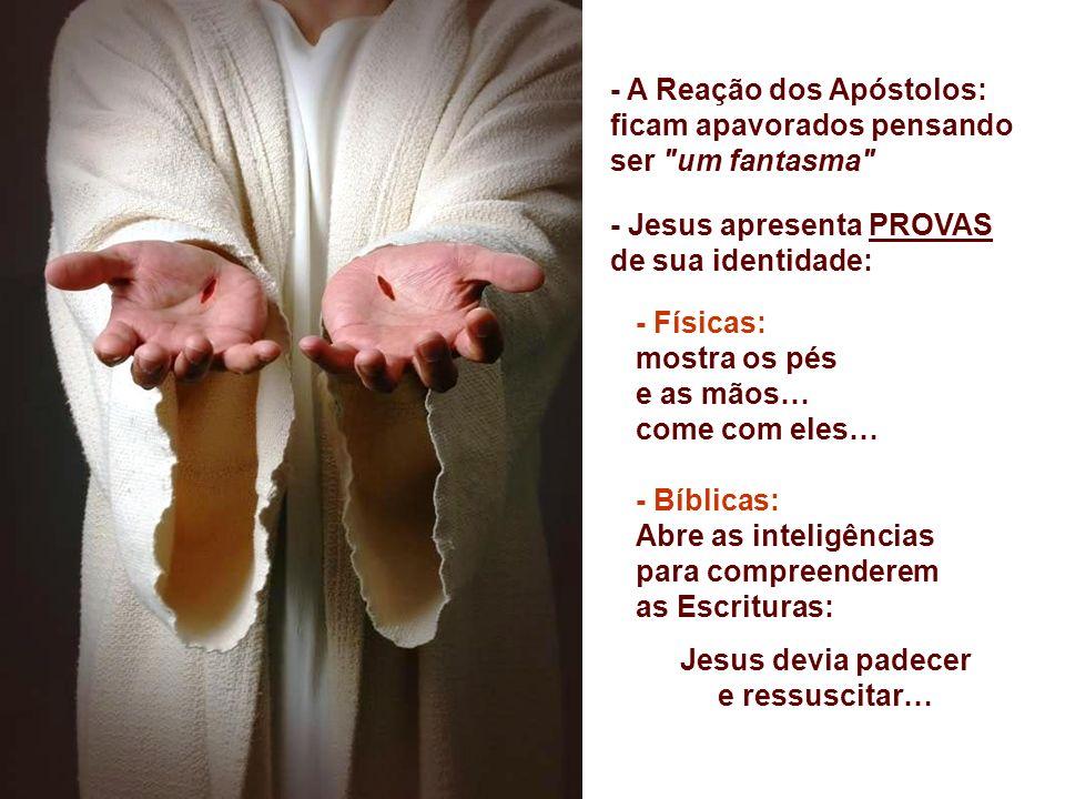 - A Reação dos Apóstolos: ficam apavorados pensando ser um fantasma