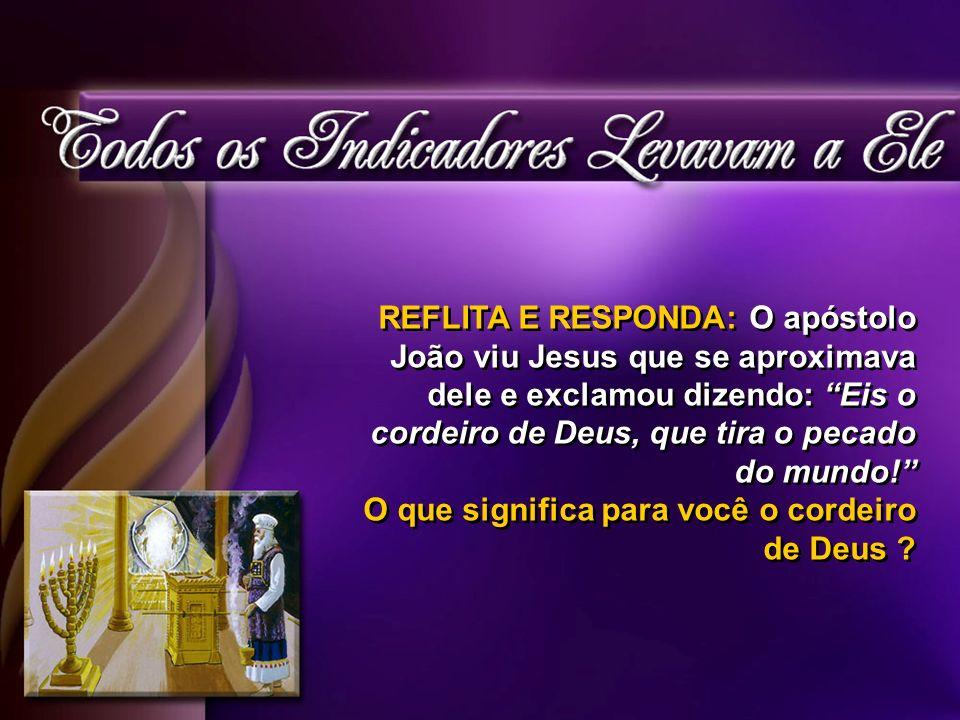 REFLITA E RESPONDA: O apóstolo João viu Jesus que se aproximava dele e exclamou dizendo: Eis o cordeiro de Deus, que tira o pecado do mundo!