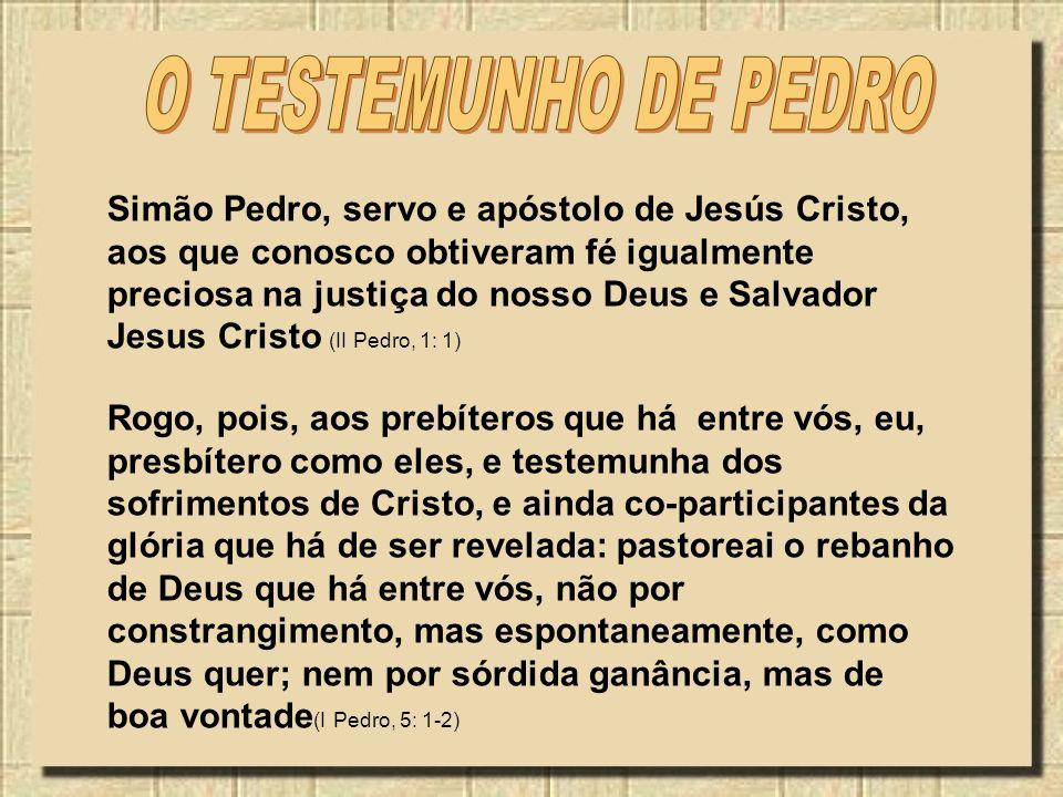 O TESTEMUNHO DE PEDRO