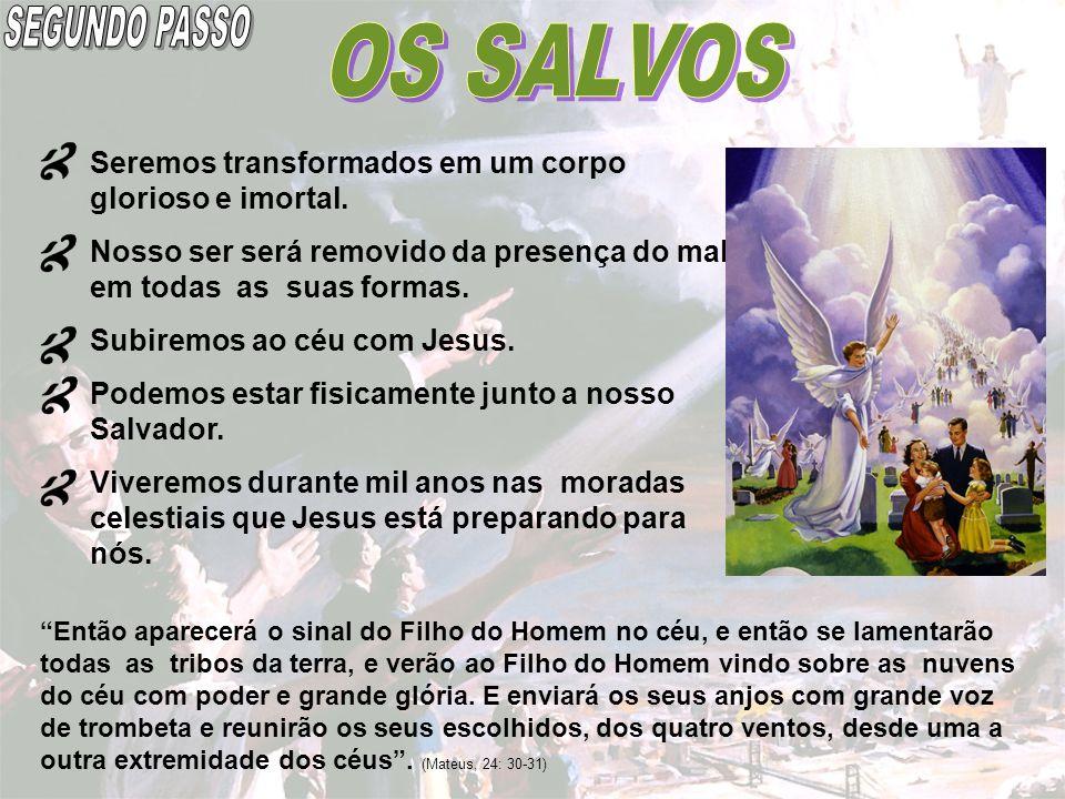 SEGUNDO PASSO OS SALVOS