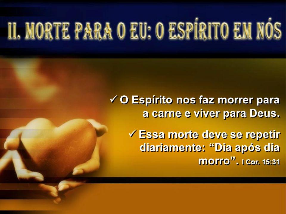 O Espírito nos faz morrer para a carne e viver para Deus.