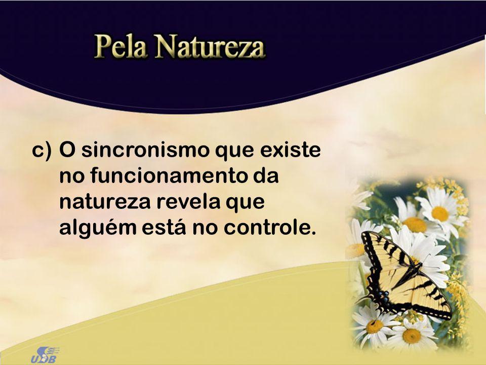 O sincronismo que existe no funcionamento da natureza revela que alguém está no controle.