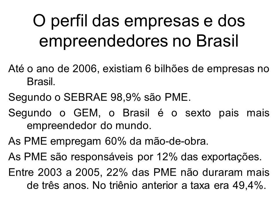 O perfil das empresas e dos empreendedores no Brasil