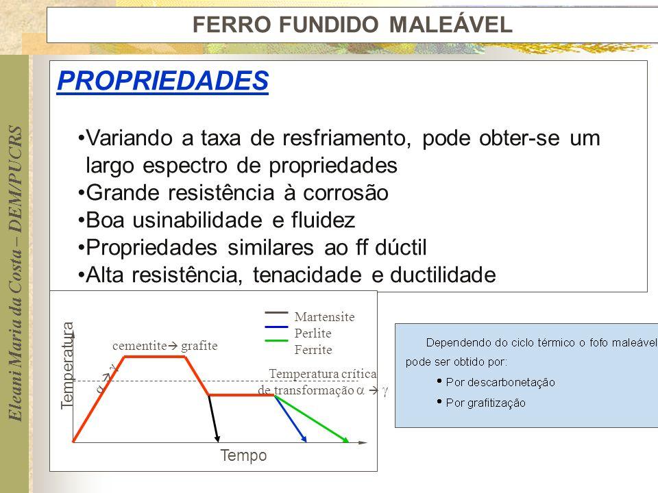 FERRO FUNDIDO MALEÁVEL