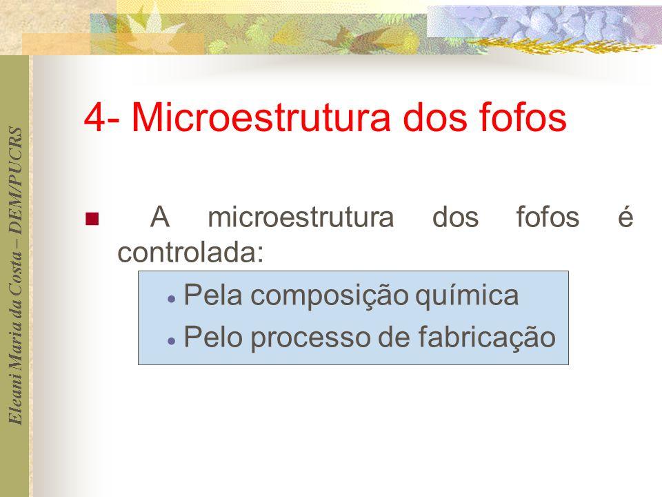 4- Microestrutura dos fofos