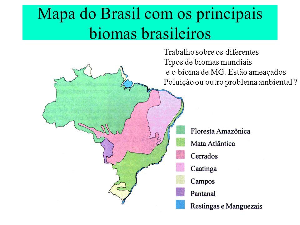 Mapa do Brasil com os principais biomas brasileiros