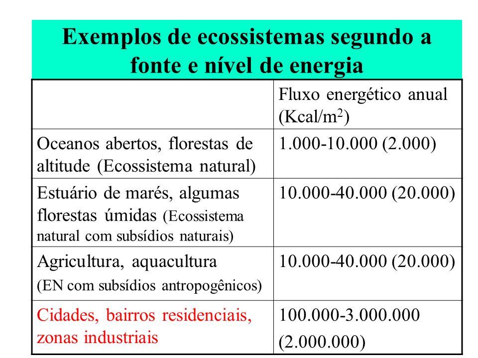 Exemplos de ecossistemas segundo a fonte e nível de energia