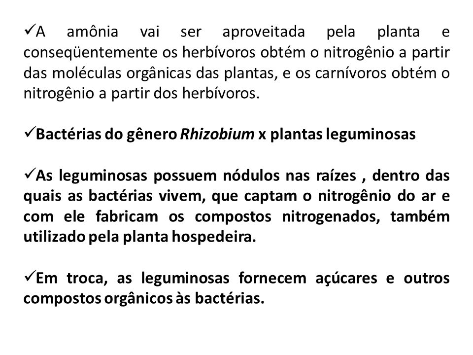 A amônia vai ser aproveitada pela planta e conseqüentemente os herbívoros obtém o nitrogênio a partir das moléculas orgânicas das plantas, e os carnívoros obtém o nitrogênio a partir dos herbívoros.