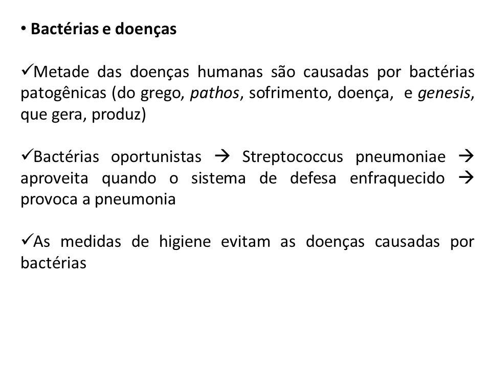 Bactérias e doenças