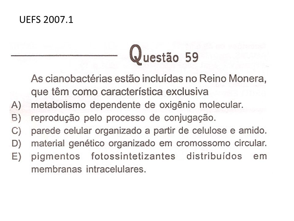 UEFS 2007.1