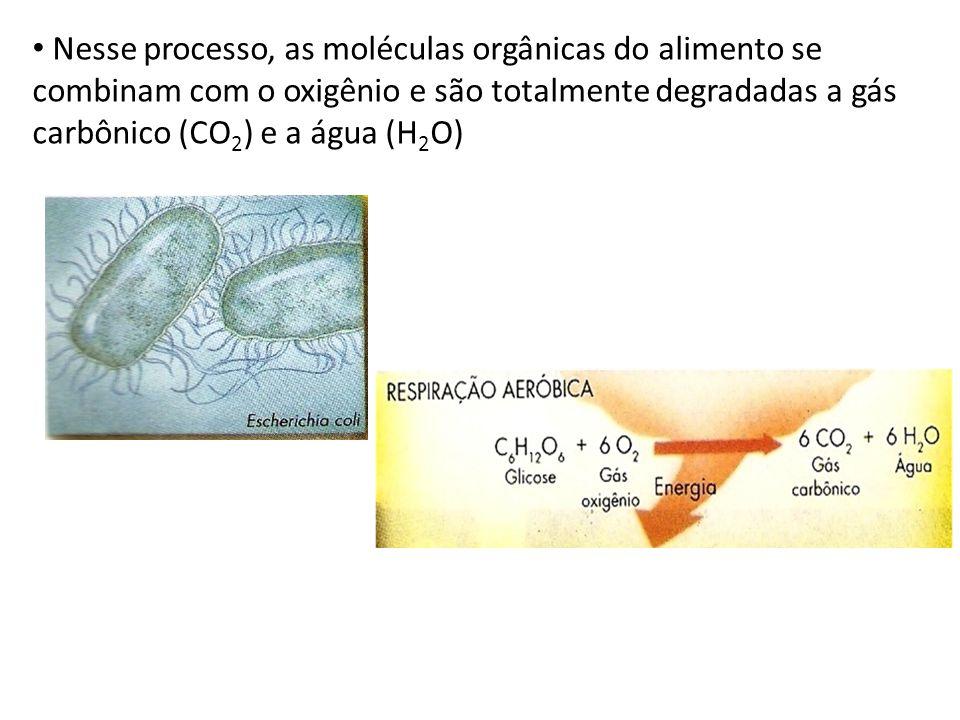 Nesse processo, as moléculas orgânicas do alimento se combinam com o oxigênio e são totalmente degradadas a gás carbônico (CO2) e a água (H2O)