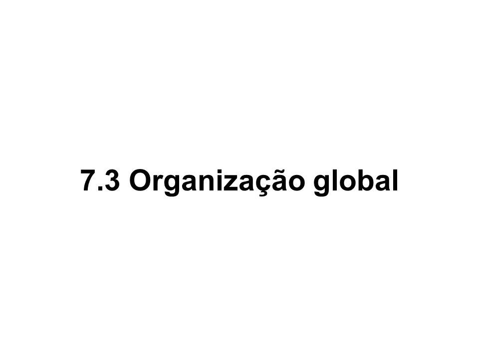 7.3 Organização global