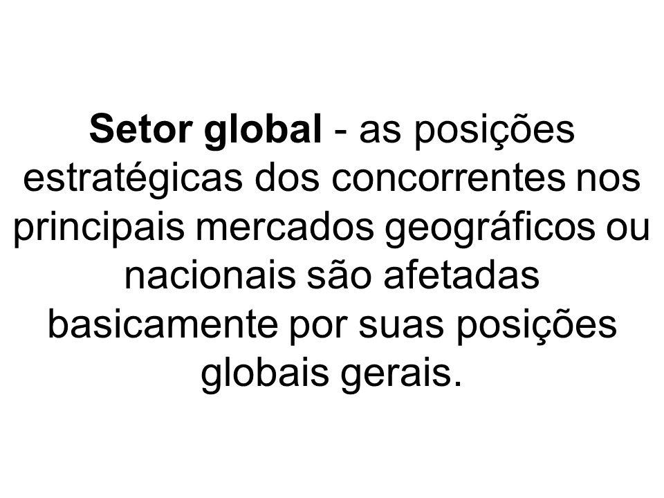 Setor global - as posições estratégicas dos concorrentes nos principais mercados geográficos ou nacionais são afetadas basicamente por suas posições globais gerais.