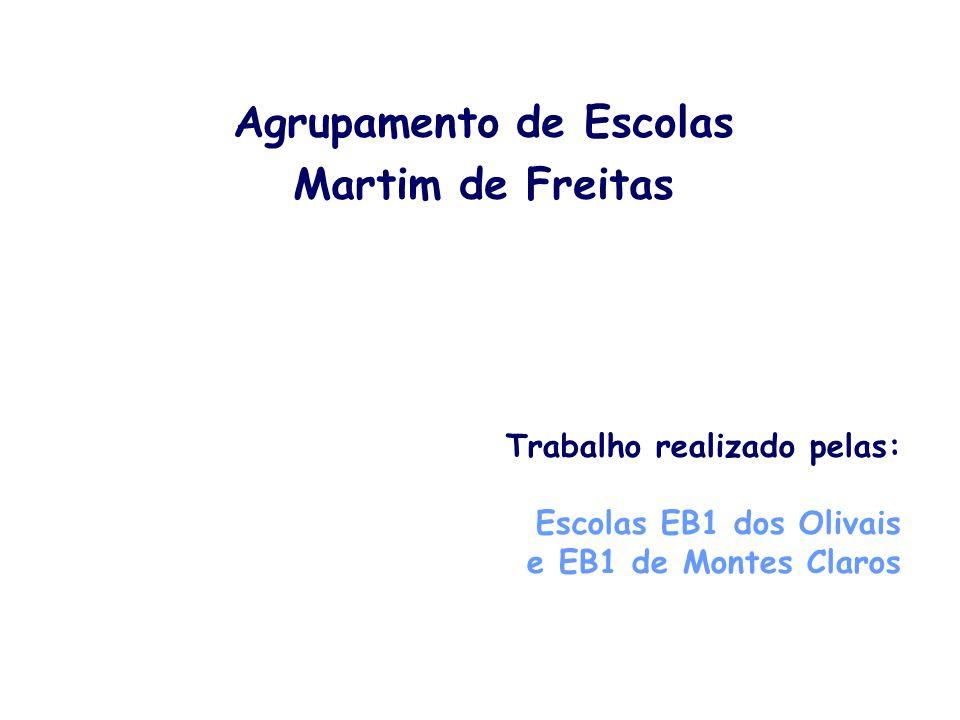 Agrupamento de Escolas Martim de Freitas