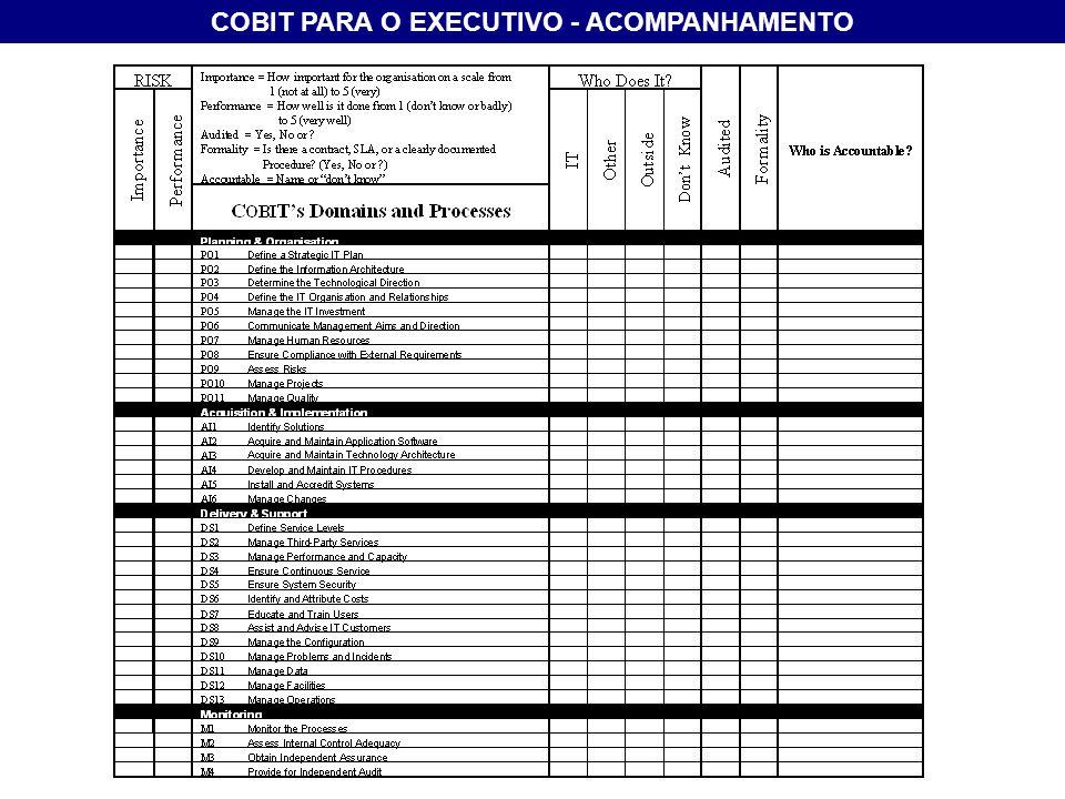 COBIT PARA O EXECUTIVO - ACOMPANHAMENTO