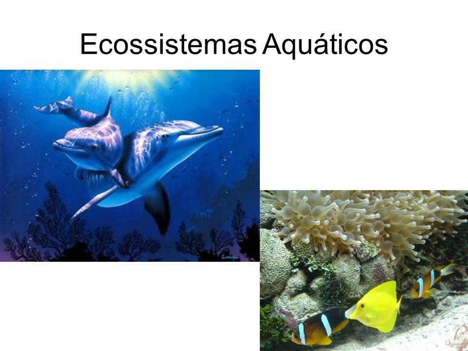 Ecossistemas Aquáticos