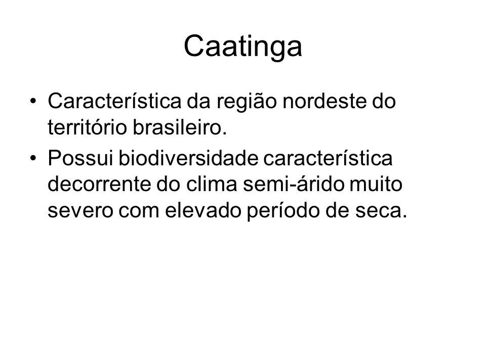 Caatinga Característica da região nordeste do território brasileiro.