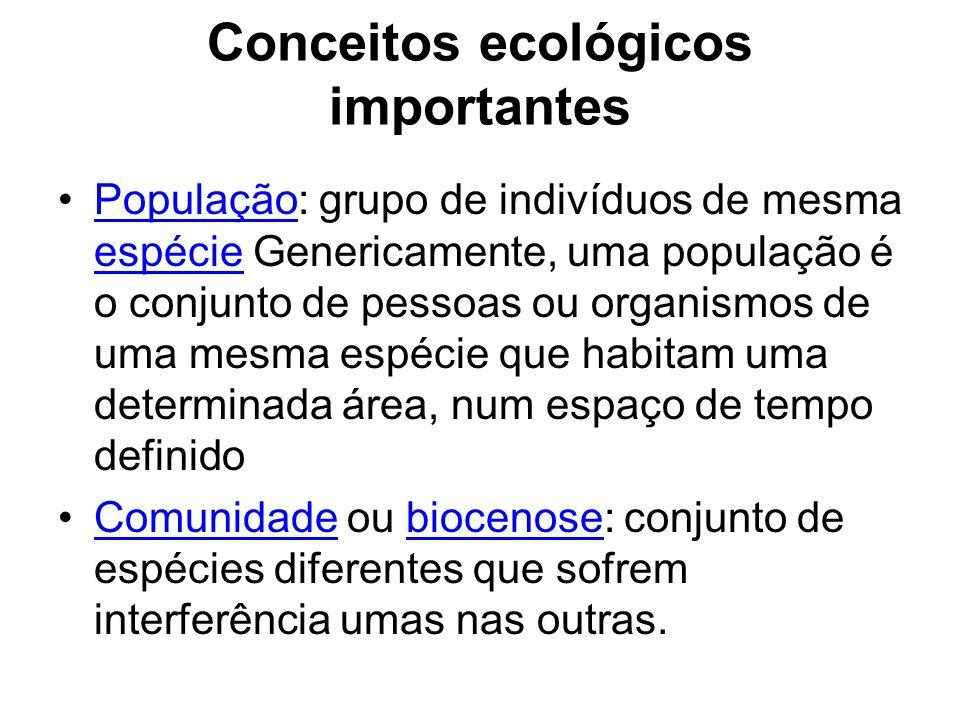 Conceitos ecológicos importantes