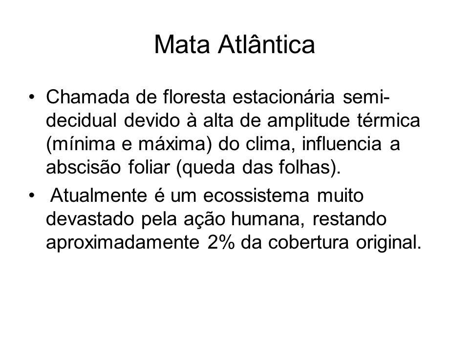 Mata Atlântica