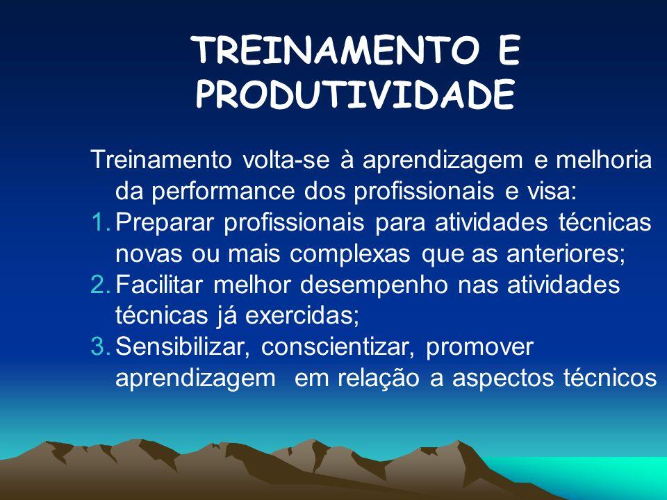 TREINAMENTO E PRODUTIVIDADE