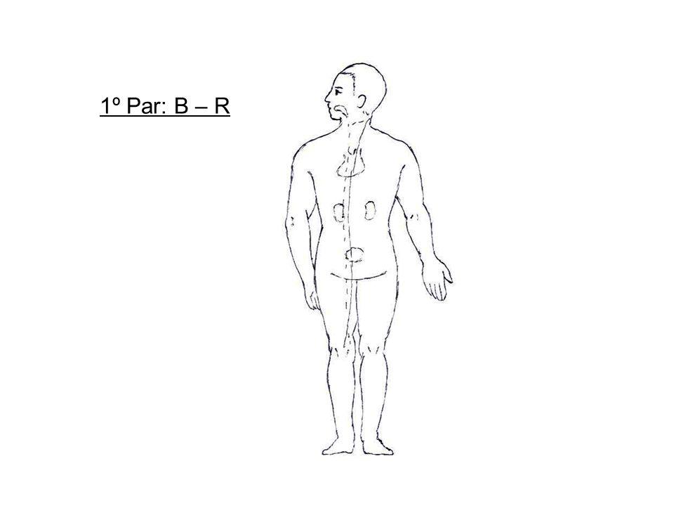 1º Par: B – R