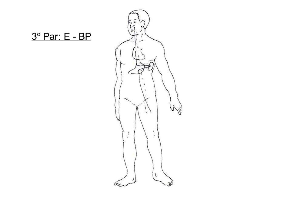 3º Par: E - BP
