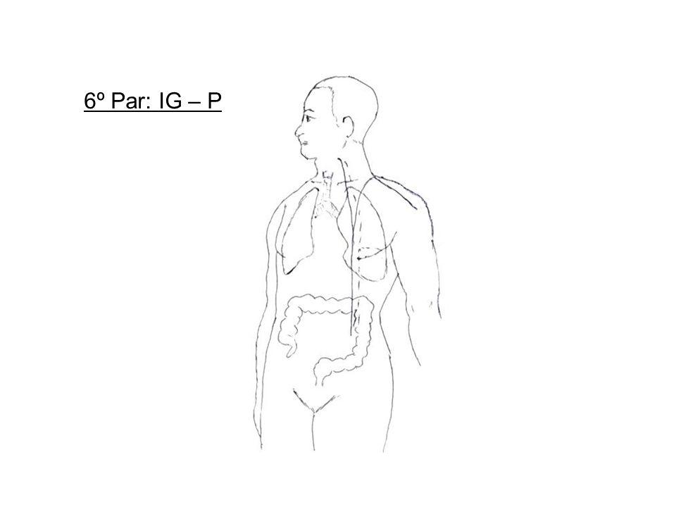 6º Par: IG – P