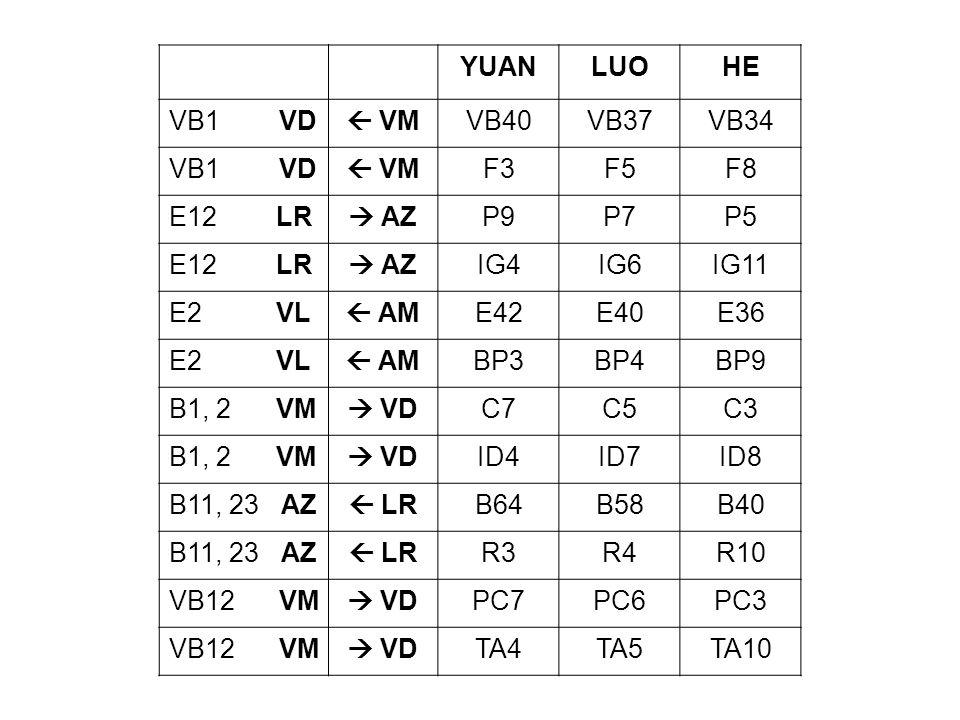 YUAN LUO. HE. VB1 VD.  VM. VB40. VB37. VB34. F3. F5. F8. E12 LR.  AZ. P9.