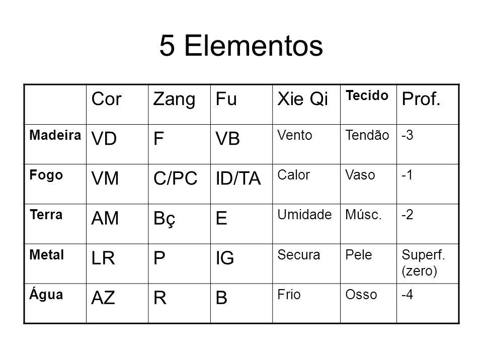 5 Elementos Cor Zang Fu Xie Qi Prof. VD F VB VM C/PC ID/TA AM Bç E LR