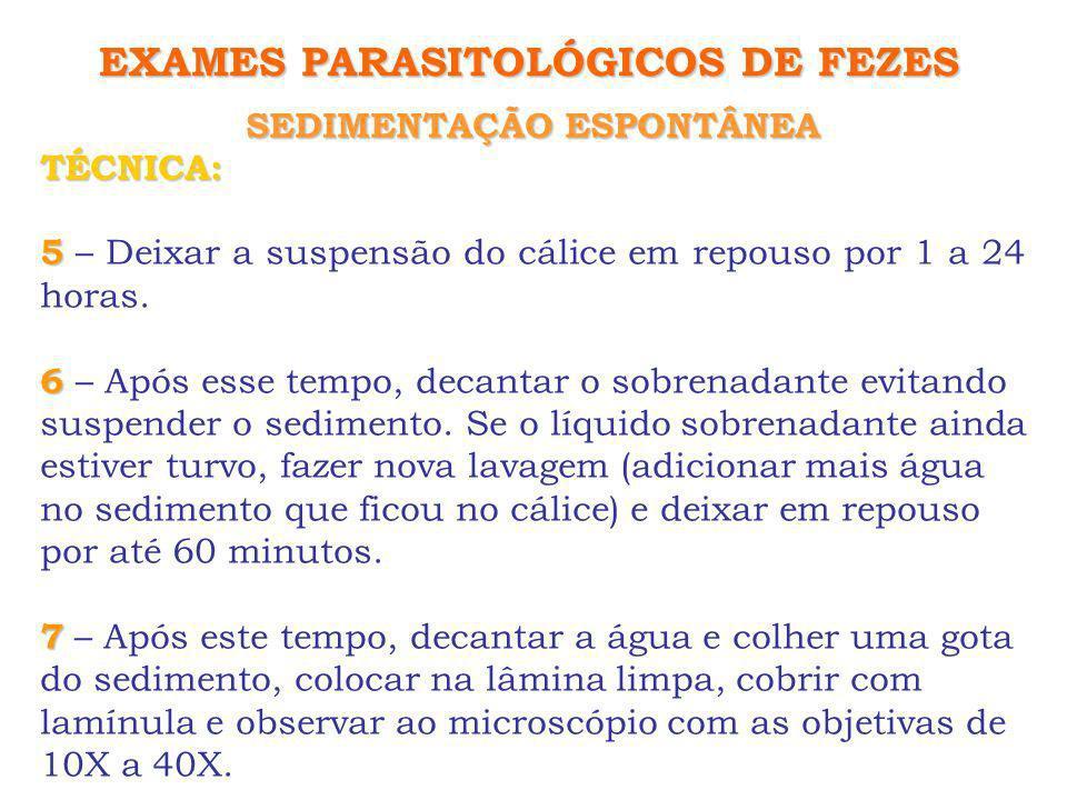 EXAMES PARASITOLÓGICOS DE FEZES SEDIMENTAÇÃO ESPONTÂNEA