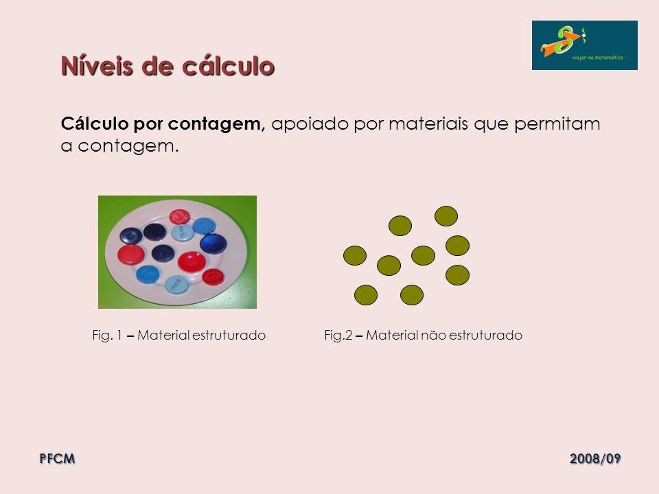 Níveis de cálculo Cálculo por contagem, apoiado por materiais que permitam a contagem.