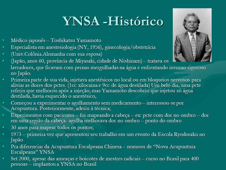 YNSA -Histórico Médico japonês – Toshikatsu Yamamoto