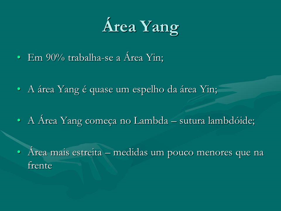Área Yang Em 90% trabalha-se a Área Yin;