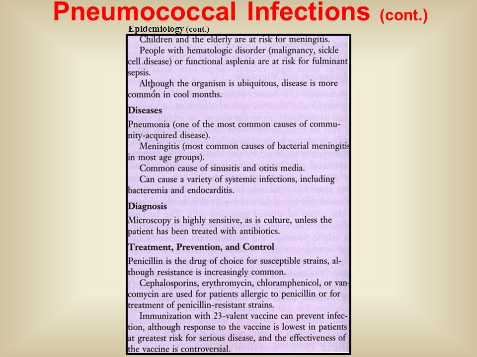 Pneumococcal Infections (cont.)