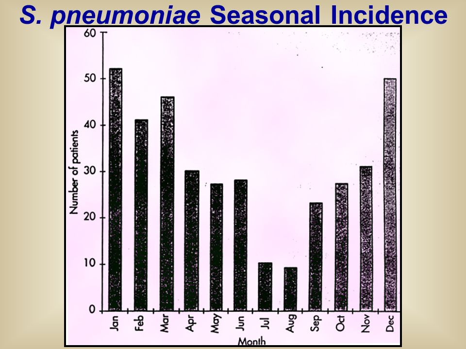 S. pneumoniae Seasonal Incidence