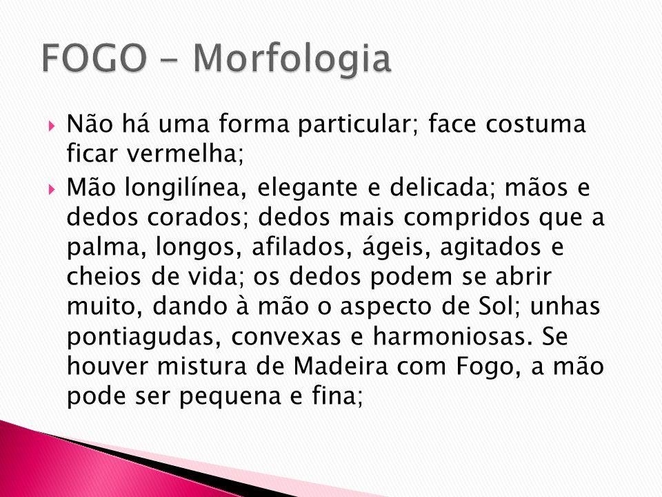 FOGO - Morfologia Não há uma forma particular; face costuma ficar vermelha;