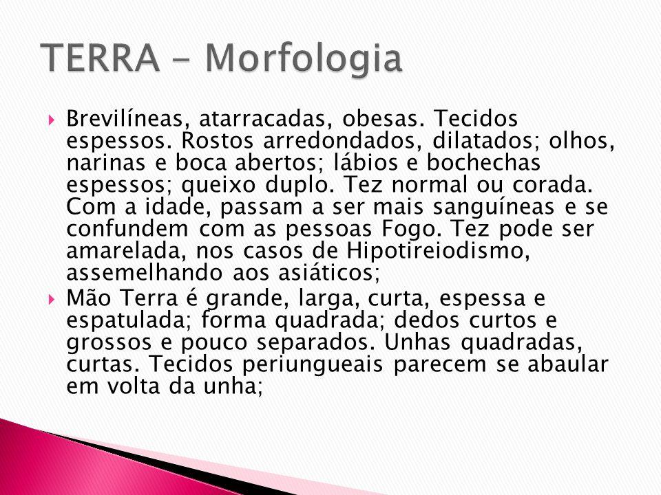 TERRA - Morfologia