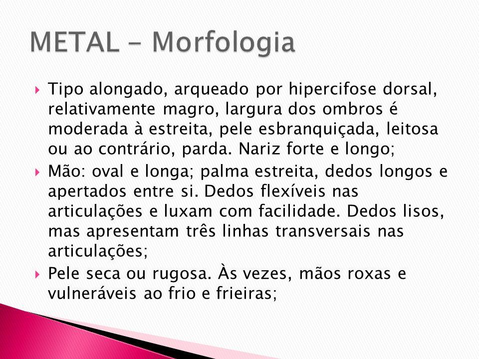 METAL - Morfologia