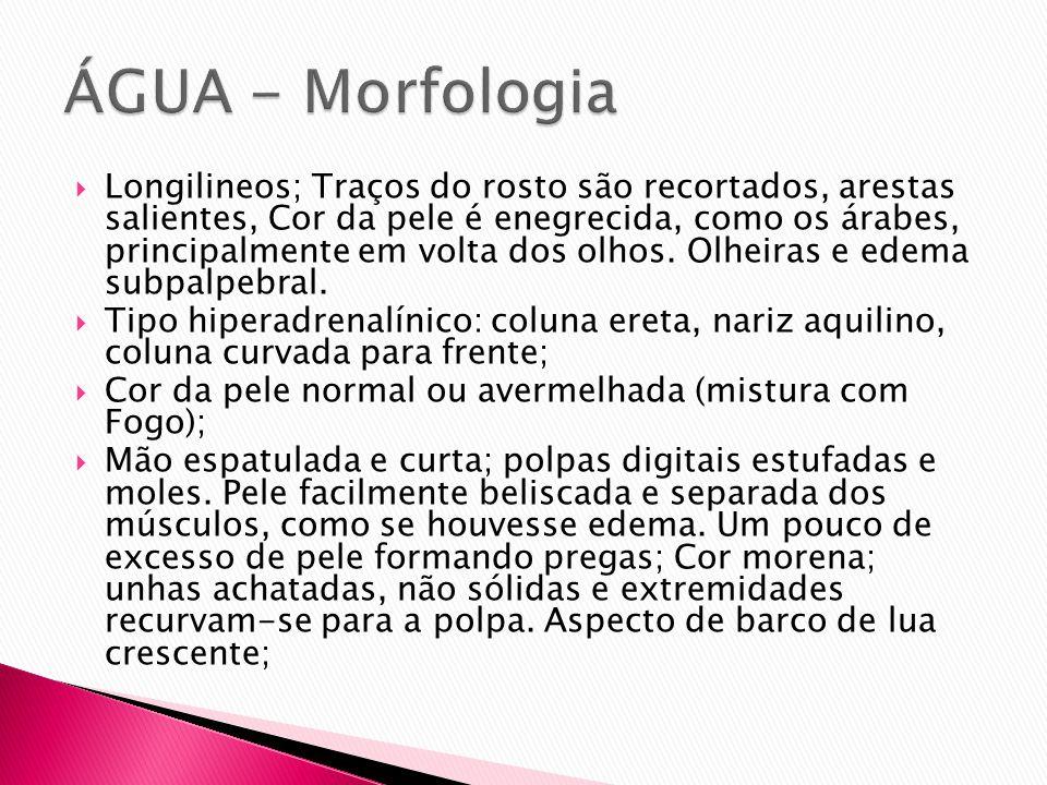 ÁGUA - Morfologia