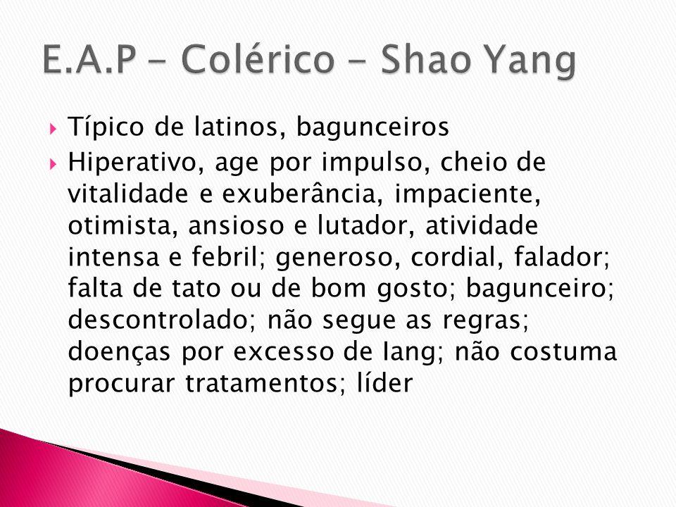 E.A.P - Colérico - Shao Yang
