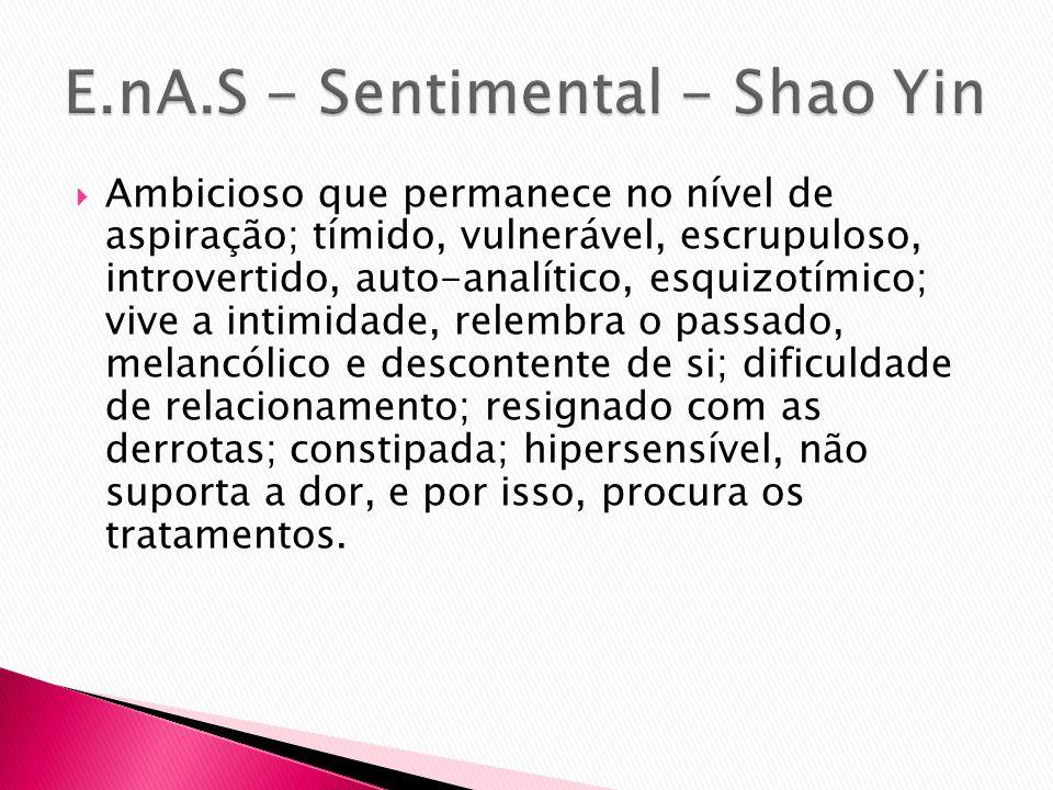 E.nA.S - Sentimental - Shao Yin